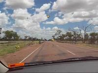 Australia_locusts_0001