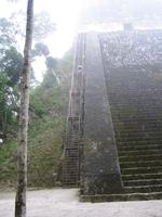 Matt_stairs_1
